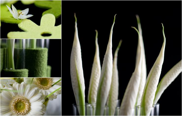 home-bloemen-01