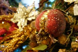Kerst: Autumn Fairies